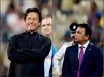 কোথায় নয়া পাকিস্তান - ইমরানকে বার্তা সানির! 'অ্যাকশন' নাও, বাড়াব বন্ধুত্বের হাত