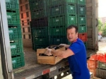 ব্রাজিলে করোনার বিরুদ্ধে লড়াইয়ে বাড়ি বাড়ি খাবার দিয়ে সাহায্য বিশ্বকাপজয়ী অধিনায়কের