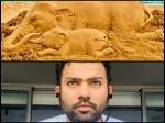 হাতি মেরে সাথি!কেরলে গর্ভবতী হাতি খুনে গর্জে উঠে কী লিখলেন রোহিত শর্মা