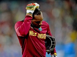 Chris Gayle Quit Odis After 2019 World Cup