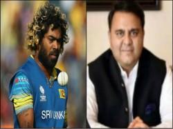 Sri Lanka Sports Minister Has Rejected Pak Minister S Claim