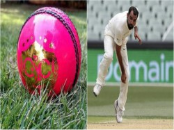 Pink Ball Test Mohammed Shami Previously Played In Eden In Pink Ball Get 7 Wickets