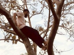 Why Team India Captain Virat Kohli Climbs To A Tree Irfan Pathan Responds