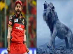 Ipl 2020 Royal Challengers Bangalore Post Picture Of Virat Kohli And Lion